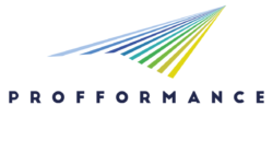 Participation of the Foundation Tempus in the European project PROFFORMANCE
